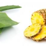 Los mejores aliados en tu dieta para bajar de peso: La piña y el Aloe Vera